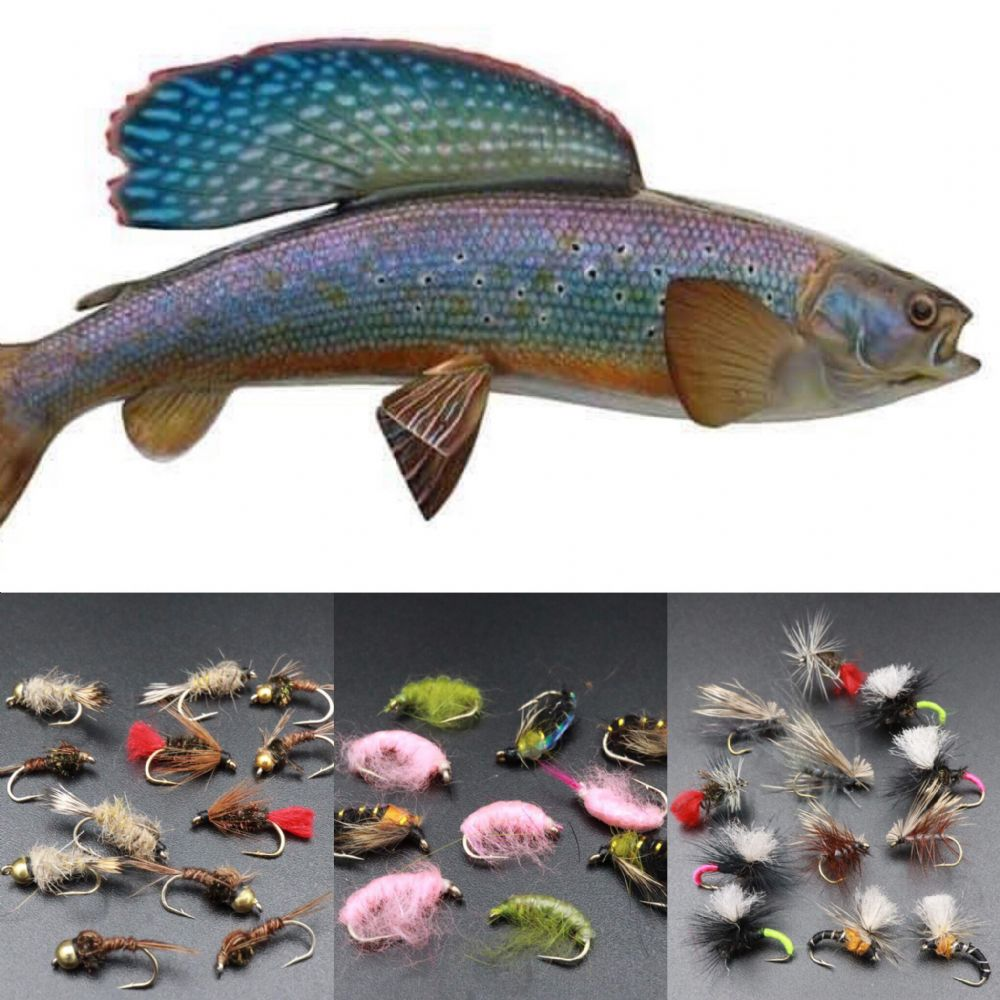 Grayling Ultimate Mega Fly Fishing Collection